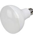 ER30-1000e BR30 LED Bulb 03
